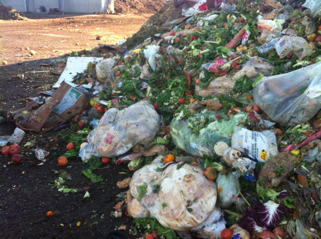 Food waste at Enviro-Smart
